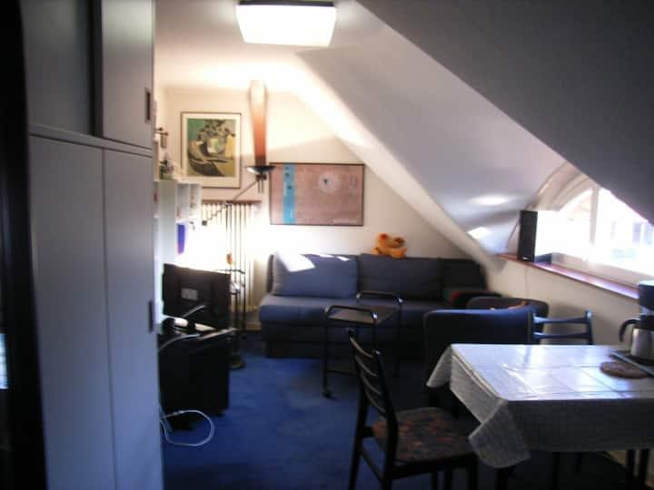 Dachzimmer im Einzelhaus mit Garten