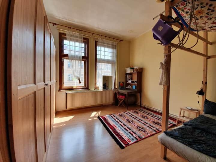 Útulný pokoj v eko-bytě v centru Hradce