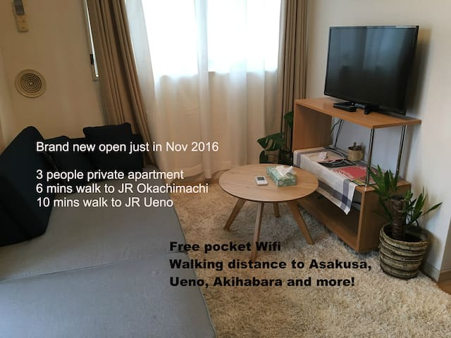 Walking distance to Ueno station entire apartment - Taitō-ku