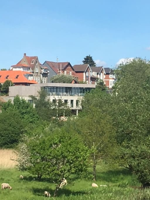 Huset set fra åen