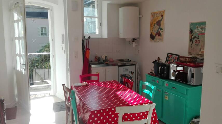 Studio en plein centre de Nantes - Nantes - Appartamento