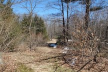 16 wooded acres to enjoy; marked trail, hammock, tree swing, campfire pit, 3 tent sites, wild blueberries