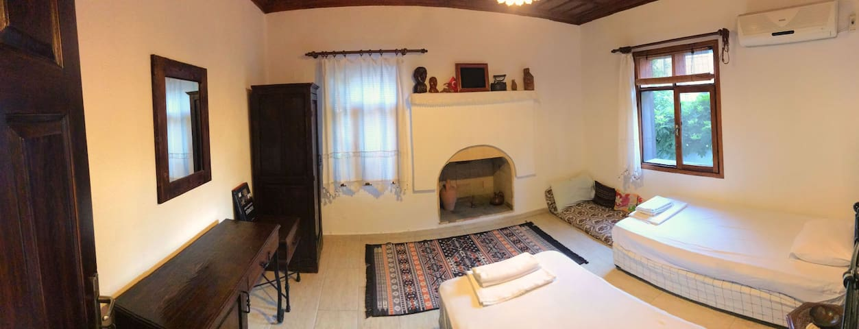 Room with a fire place
