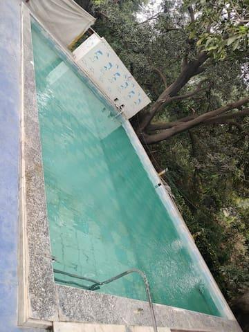 Raj Nature Park   Lush Green Habitat In 20 Acres