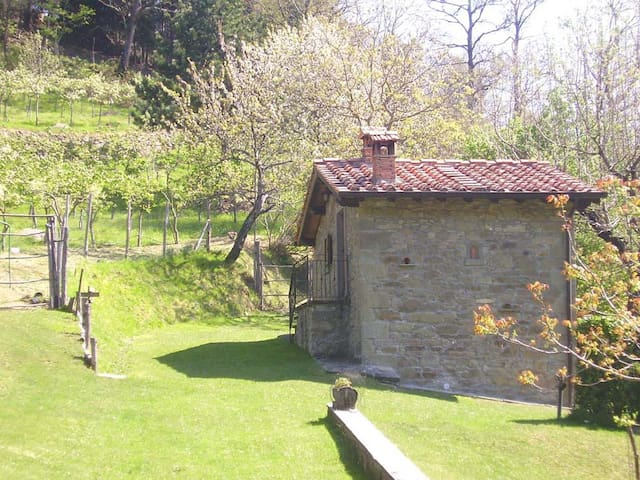 In Tuscany among woods and wildlife - Bibbiena - Casa