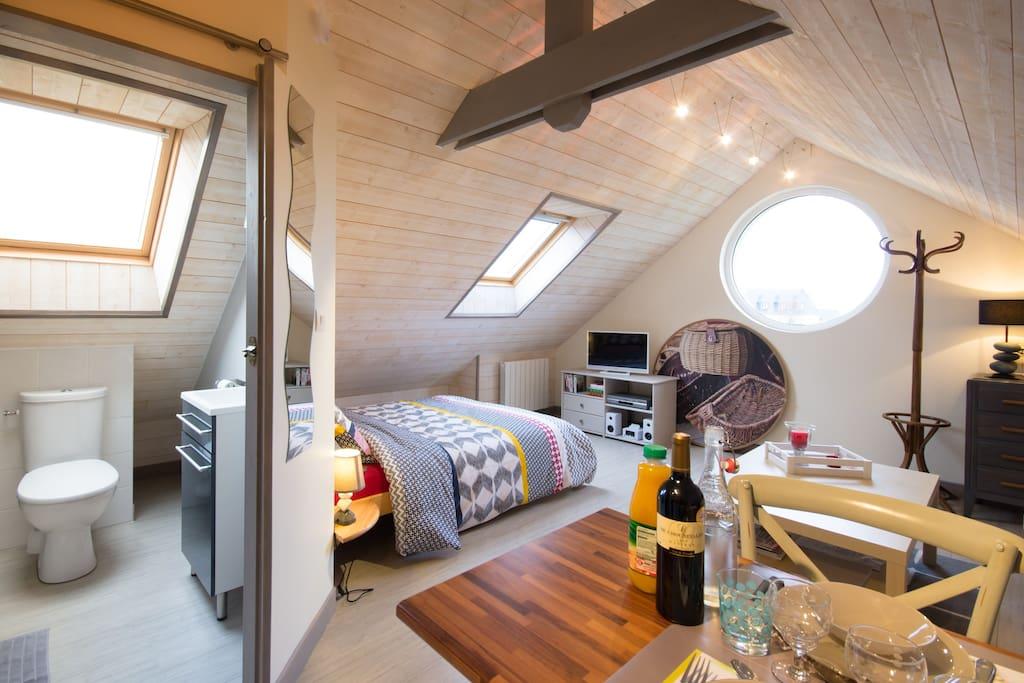 16 m2 tout confort avec TV écran plat, lecteur dvd, mini chaîne, dvd et livres à disposition.