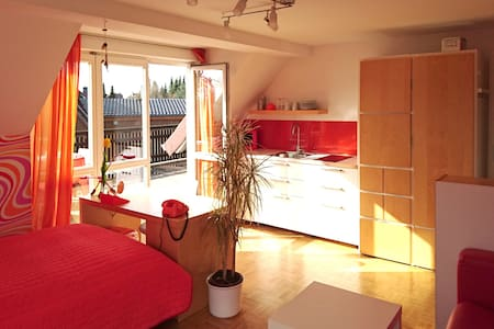 Sunny Studio with own terrasse and kitchen