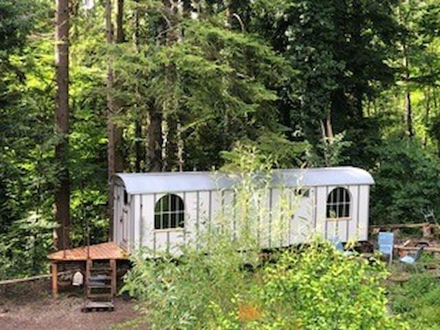 Tiny House Gästehaus auf Rädern, mit Waldsicht