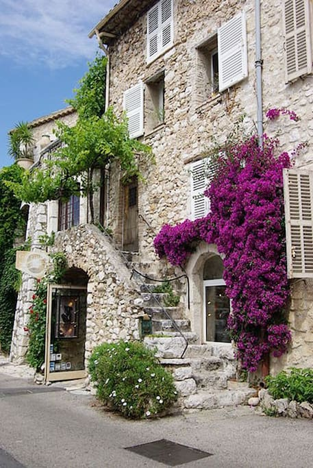 The bougainvillier
