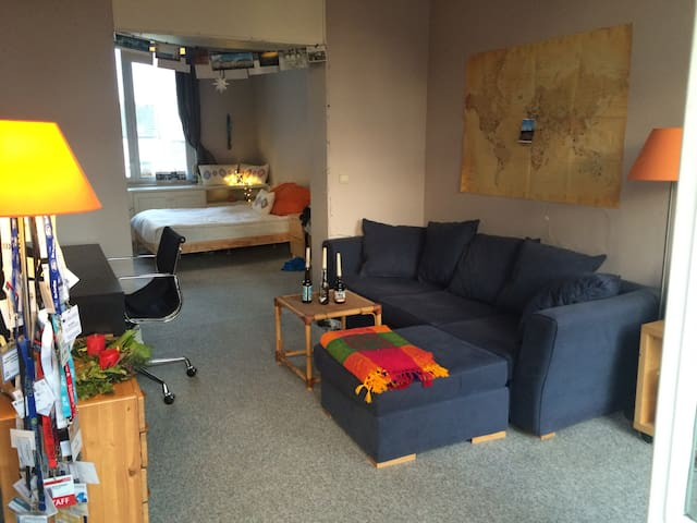 Large cozy apartment/room 15 min from city centre - Schaerbeek