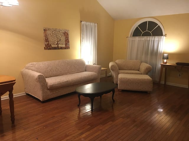 Great house for family or business person