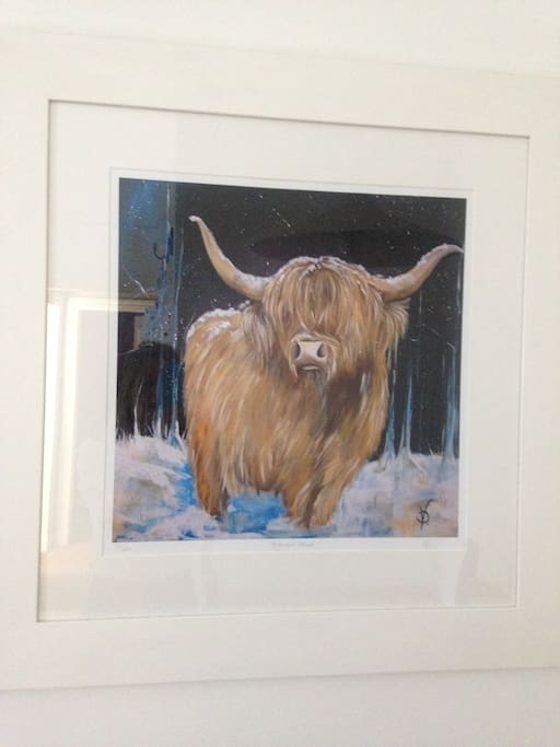 A wee bit of Scotland - The Highland Cow!