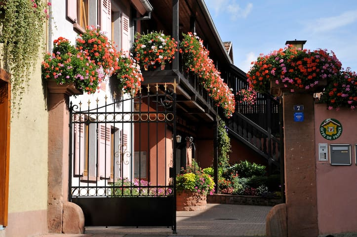 Gîtes Weyer La maison - Bergheim - Dům