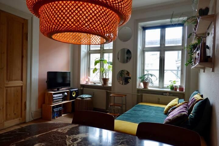 Big cozy 3 room apartment in trendy Vesterbro