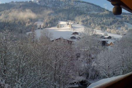 2 pieces + cabine 5 p Prox pistes  - Praz-sur-Arly