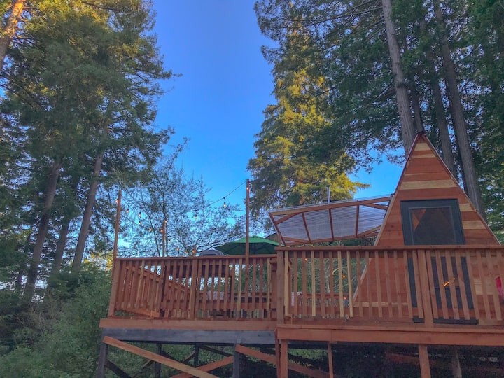 Juju Town: A Santa Cruz Redwoods Retreat