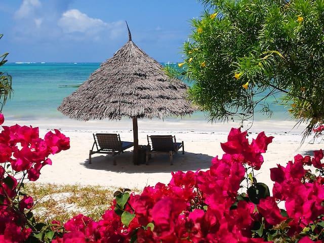 The Coco Paradise-MAUA COZY BEACH APARTMENT