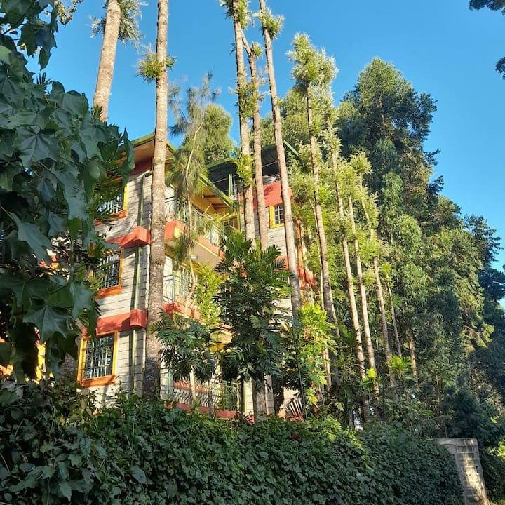 La Gura Villa an authentic nature experience.