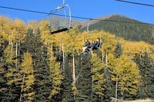 Scenic Skyride at Snowbowl