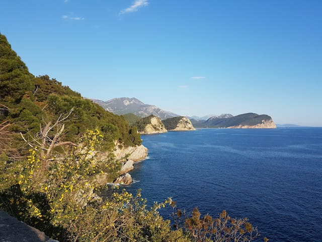Petrovac perfect seaview appartment