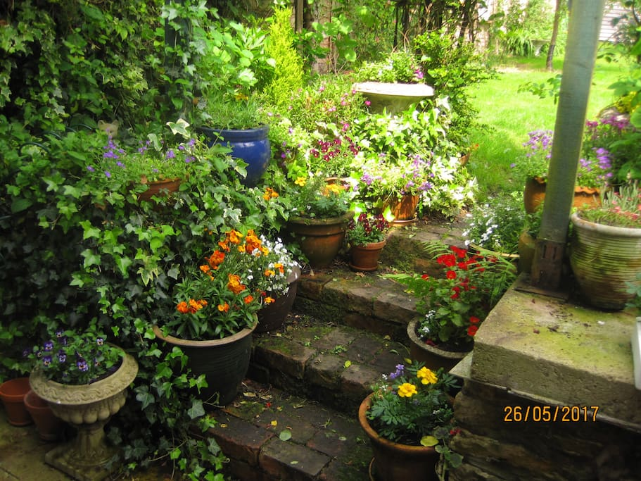 Steps to back garden