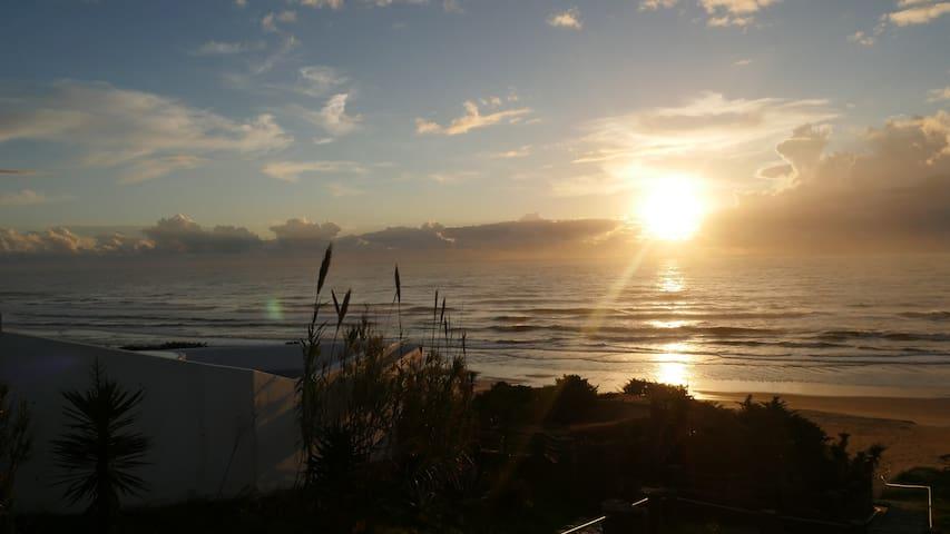¡Sol, playa y diversión en una misma ubicación!