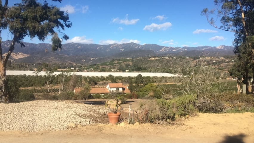 Room on  Rincon Mountain! - Carpinteria - Apartment