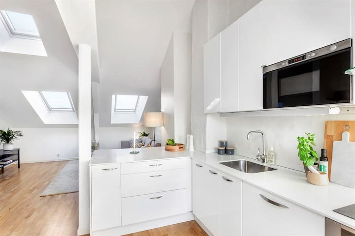 Penthouse in the heart of Oslo