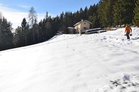 Walden, casa nel bosco. - Folgaria - Natuur/eco-lodge