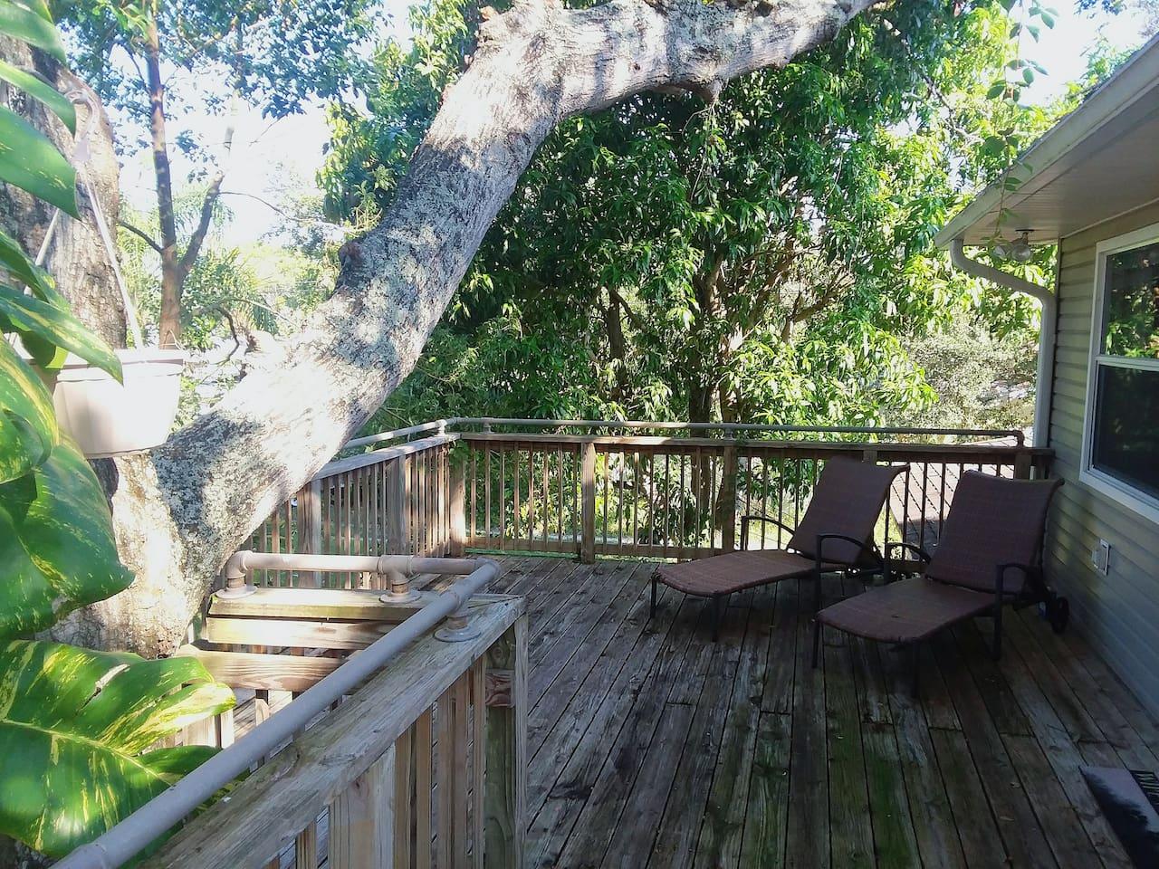 Unique tree house vibe near beachs