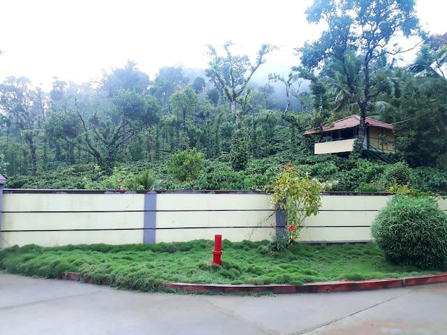 Cosy homestay amidst coffee plantation