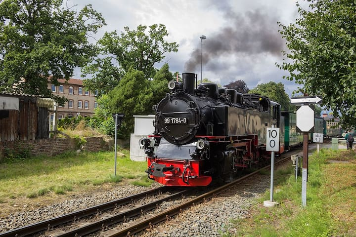 """Rasender Roland - """"Running Ronald"""" stops nearby"""