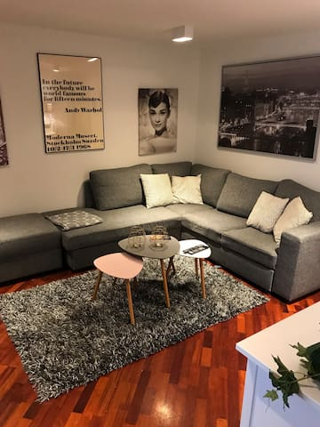 A beauteful apartment near Reykjavík