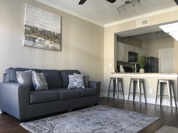 Relaxing / Spacious  Luxury Apartment in Midtown