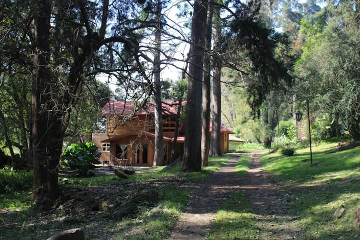 Cabañas Pátzcuaro (Pacanda)