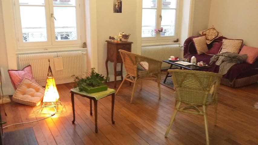 Magnifique appartement ancien à la croix rousse - Lyon - Apartament