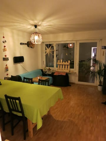 Lovely flat next to the Rhine river - Birsfelden - Wohnung