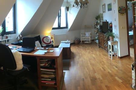 Apto.1H Oviedo para Turismo y Relax - Oviedo - Appartement