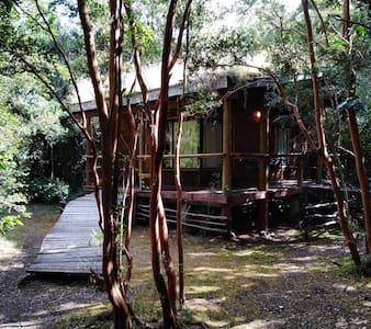 Cabaña en Río Puelo.