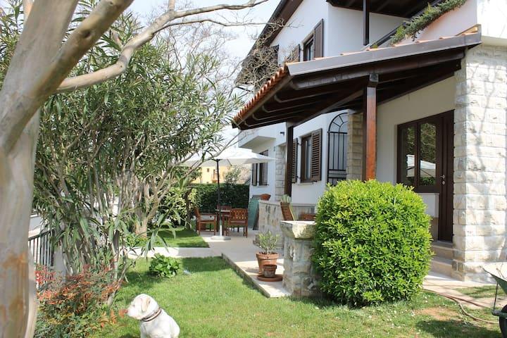 Apartment Maric Pula (Apt Mimoza) - Pula - Wohnung
