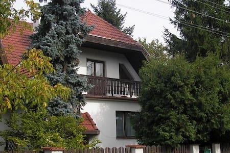 Willa obok Lasu Kabackiego - Warszawa - Villa
