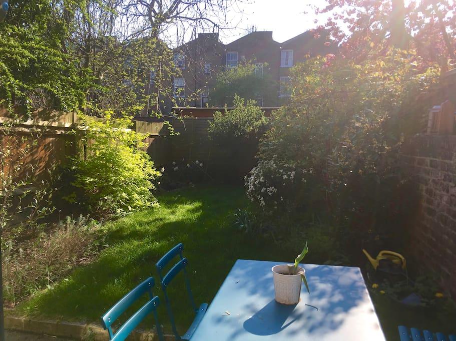 Private garden :)