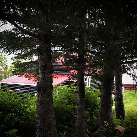 Cozy little house up north! - Siglufjörður - Huis