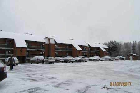 Spacious Ridgewood Studio - Walk to Ski Lift/Wifi! - Dunmore