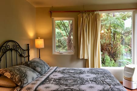 Our affordable B&B rooms give you the feel of being at home. Each room offers big windows overlooking the rainforest and allowing natural sunlight into your room. Every B&B room offers 1 queen bed, allowing maximum occupancy of 2.