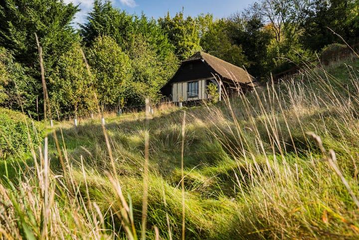 Woodside Cottage - Remote Retreat