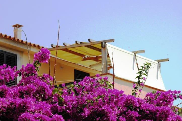 TRILOCALE LUMINOSO in centro - Santa Teresa Gallura - Apartment