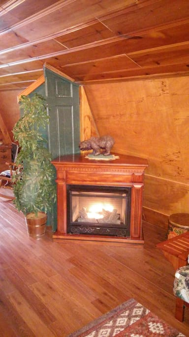 Vent Free Propane Fireplace in Living Room (Not to be used while sleeping)