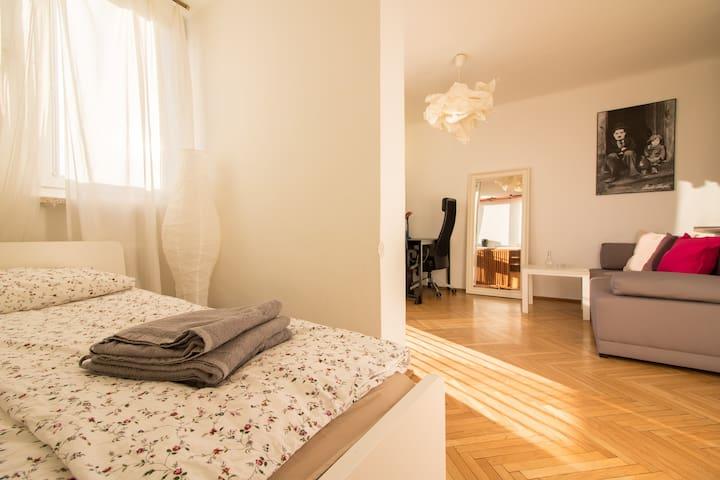 Bright apartment  in the city center - Żelazna