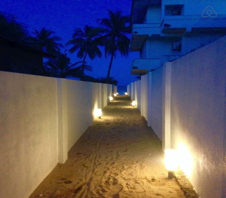 Pathway to beach at night